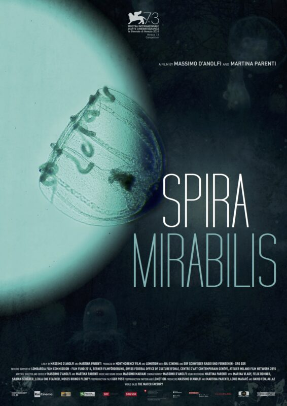 Spira Mirabilis Poster low res PANArt Hang Manufacturing Ltd.
